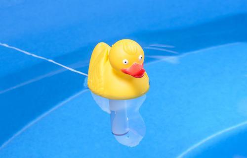 schwimmende Ente mit Thermometer